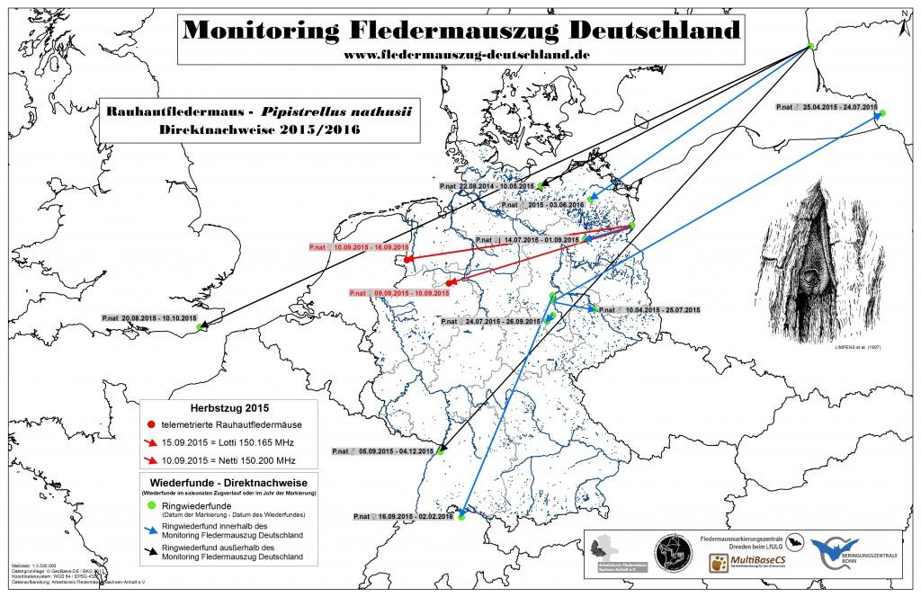 16_Projekt Monitoring Direktnachweise 2015_16