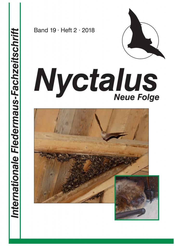 19-2 Nyctalus_Titel