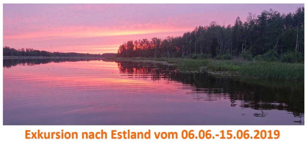 Estland Homepage