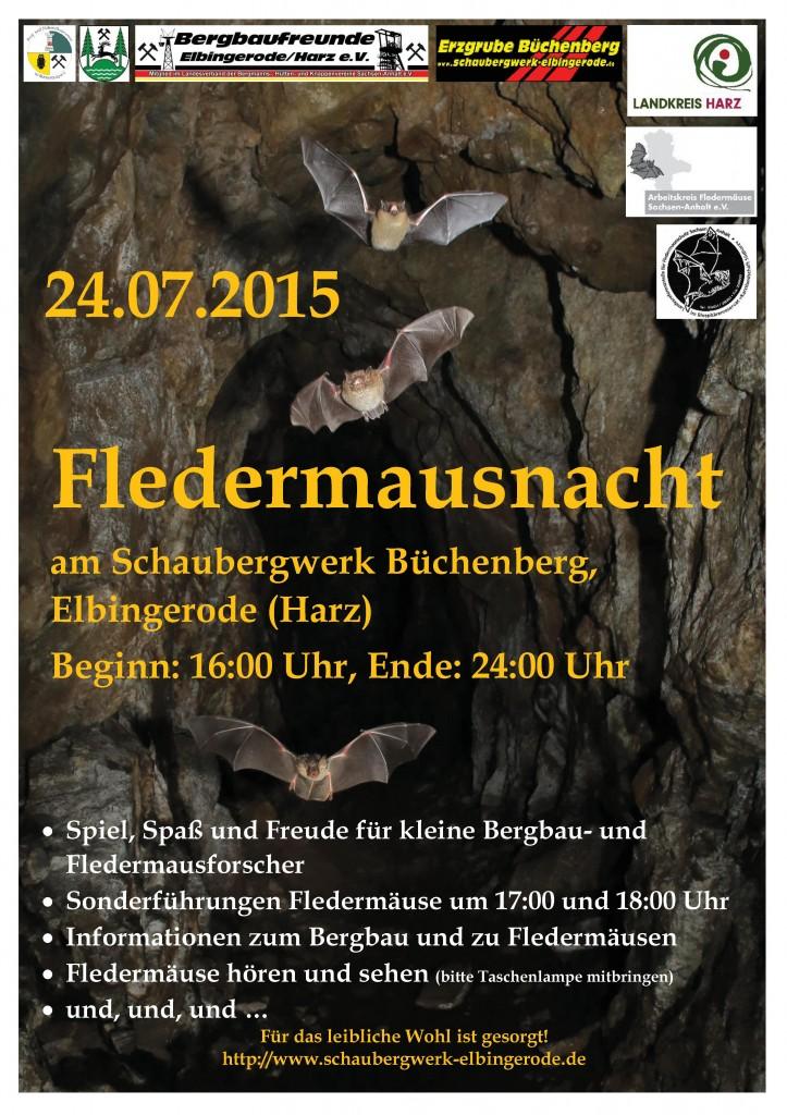 15_Plakat_FM-Nacht_Büchenberg-E