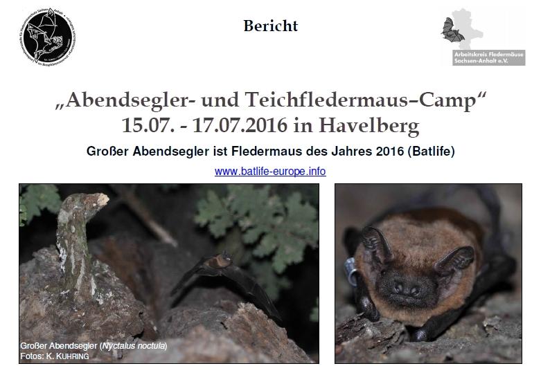 Deckblatt homepage