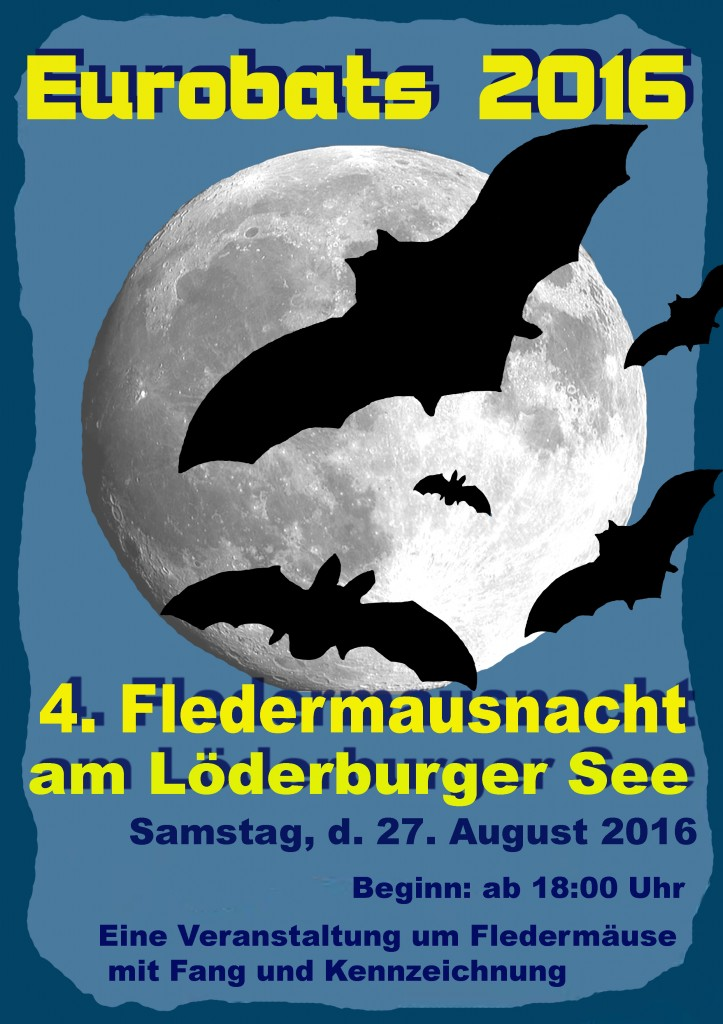 Fledermausnacht Löderburger See 2016