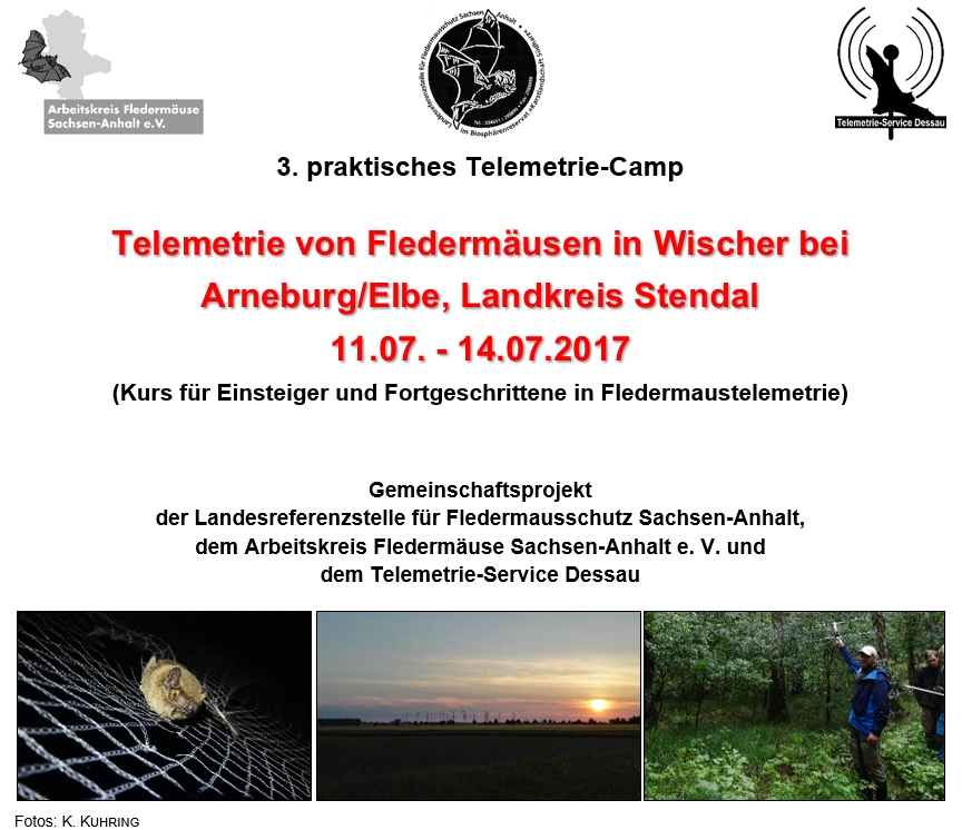 Telemetrie-Seminar Deckblatt Homepage
