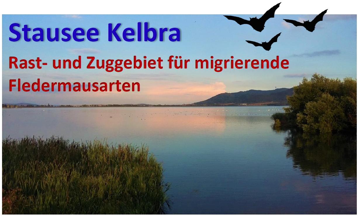 Stausee Kelbra Homepage