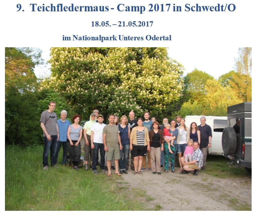 Teichfledermauscamp Homepage
