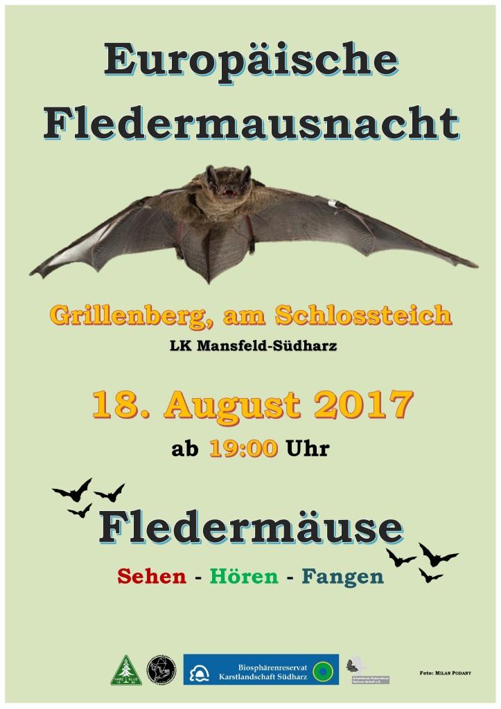 17 Fledermausnacht Grillenberg