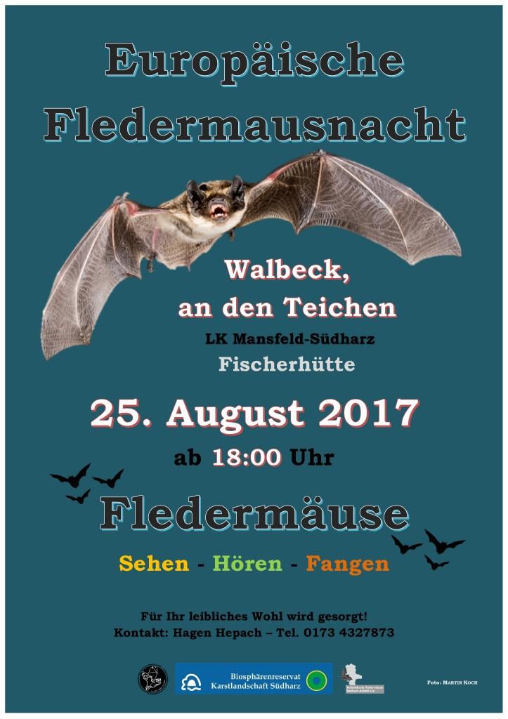 17 Fledermausnacht Wahlbeck