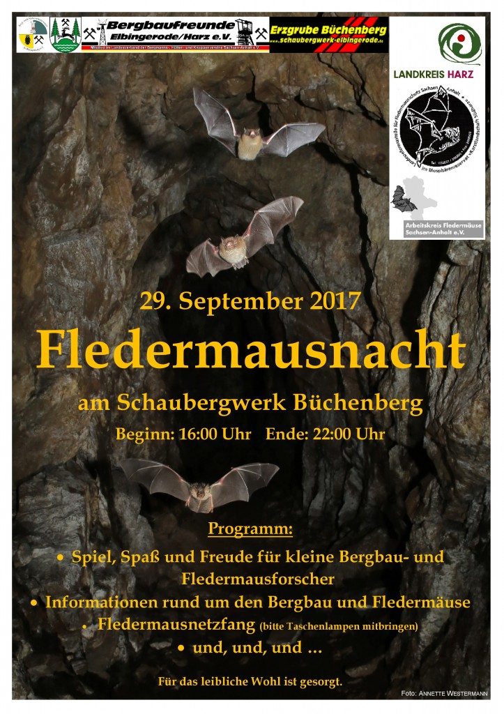 17_Plakat_FM-Nacht_Büchenberg