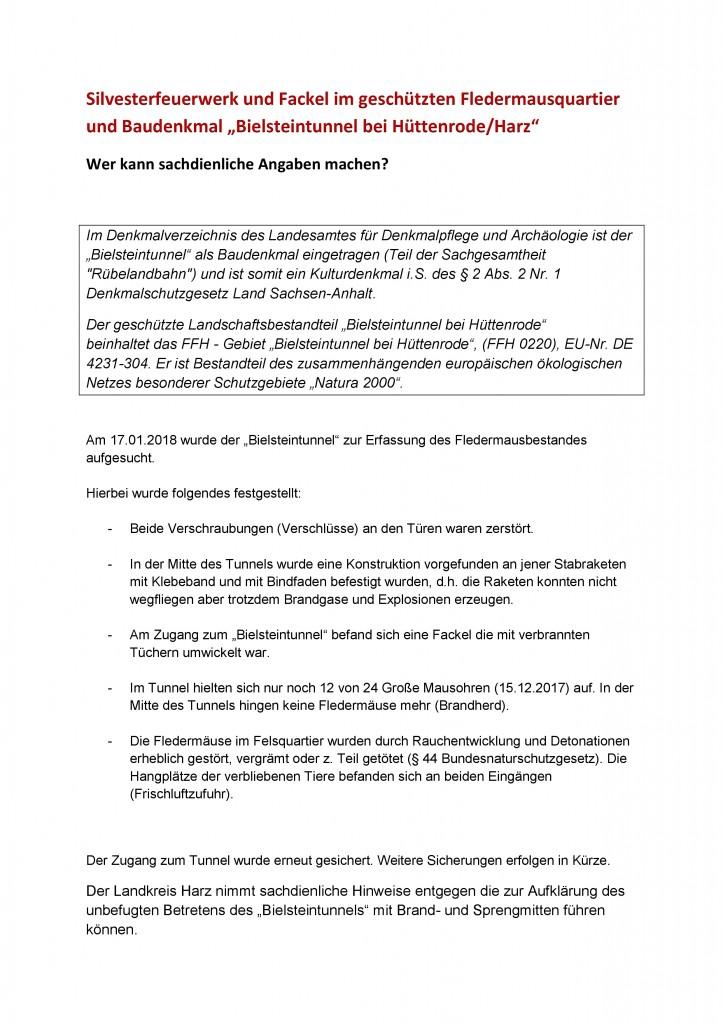 1 18 Silvesterfeuerwerk und Fackel im geschützten Fledermausquartier und Baudenkmal-Auruf