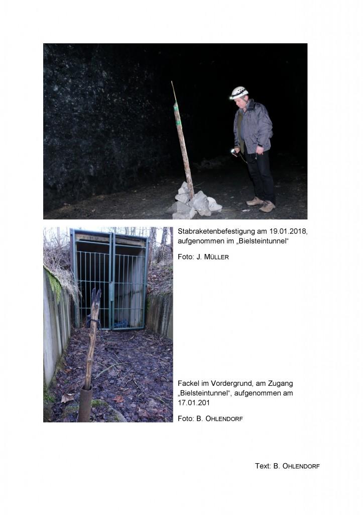 2 18 Silvesterfeuerwerk und Fackel im geschützten Fledermausquartier und Baudenkmal-Auruf