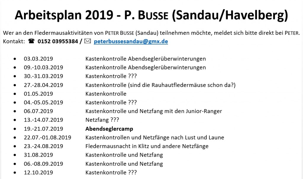 Arbeitsplan 2019_Peter Busse Sandau
