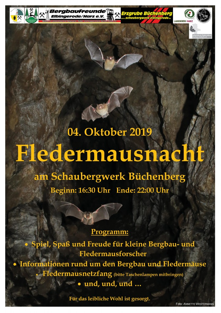 19_Plakat_FM-Nacht_Büchenberg