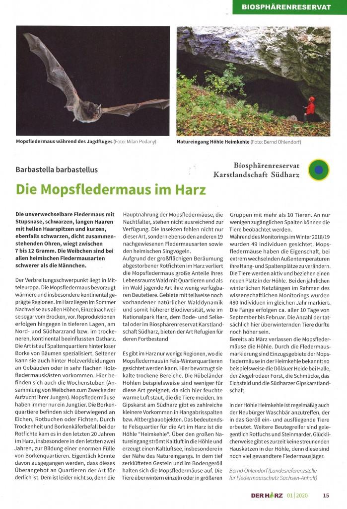 2020_01_Der Harz Die Mopsfledermaus im Harz